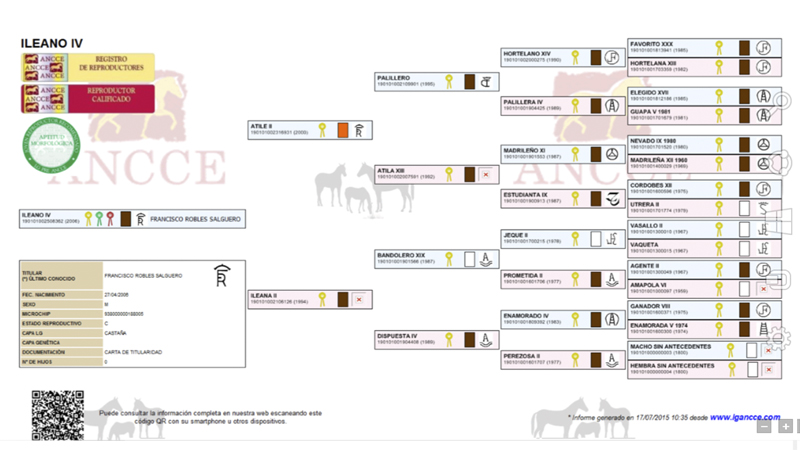 ILEANO IV Árbol Genealógico
